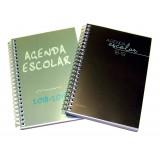 AGENDA ESCOLAR ARTES 18-19 ESPIRAL 1/8 11X16 DIA PAGINA TAPA POLIPROPILENO